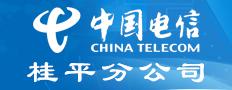 中国电信股份有限公司桂平分公司