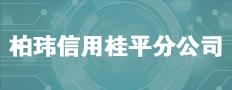 平南县柏玮信用公司桂平分公司