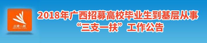 中国广西人才市场/广西人才网